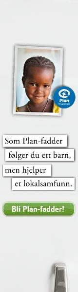 plan160x600